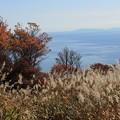 海向山の紅葉