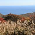 Photos: 海向山の紅葉