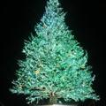 はこだてクリスマスファンタジー