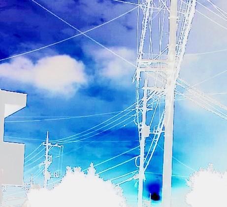 写真: 電線