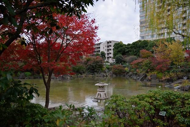 檜町公園 (3)