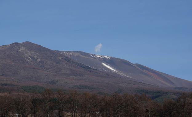 雪の無い浅間山