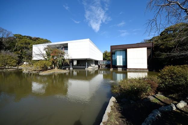 Photos: 神奈川近代美術館