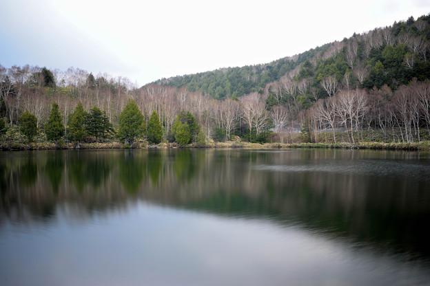 木戸池 (5)