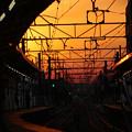 Photos: 朝の駅