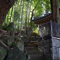 写真: お寺
