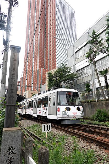 Photos: 東急世田谷線
