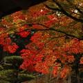 妙成寺の晩秋