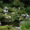 Photos: 蔵六園  庭園