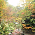 写真: 大平温泉滝見屋つり橋