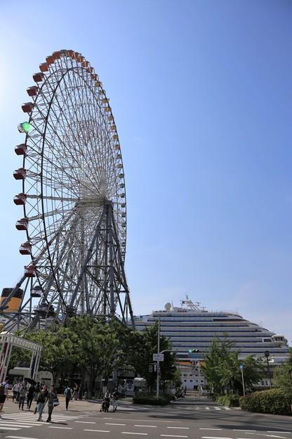 Photos: このデカさ!