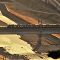 Photos: 猪名川を渡る