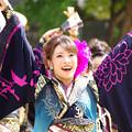 Photos: どまつり2018・百華夢想(23)