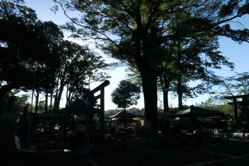 一言主神社骨董市(2019年9月)
