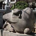 道真公神社の 牛石像