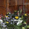 写真: 大塚割烹おきつ 今週の生け花
