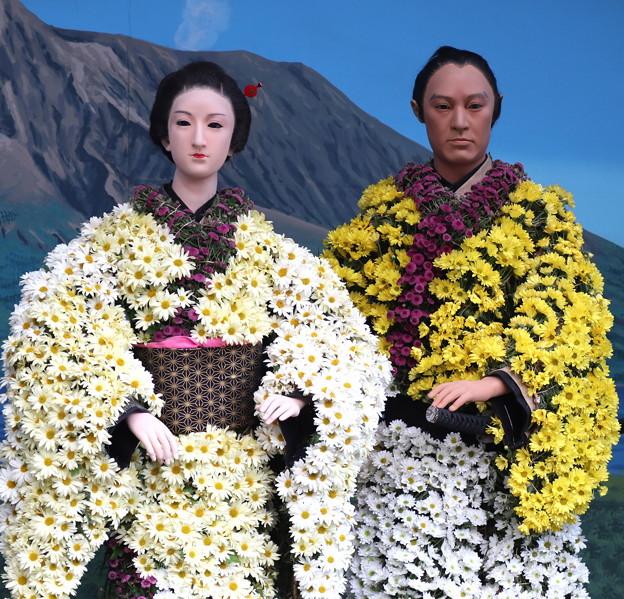 湯島天神菊祭り 菊人形 西郷どん