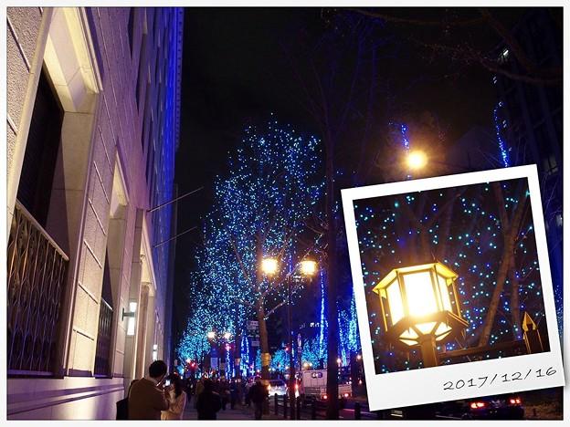写真: 街の灯