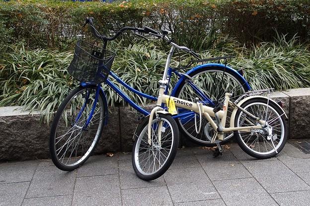 Photos: 自転車のある風景2