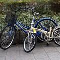 写真: 自転車のある風景2