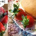 Photos: ホットケーキ