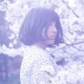 Photos: 儚