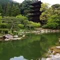 Photos: 瑠璃光寺 五重塔