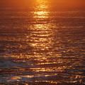 The Sun Rose 4-6-14