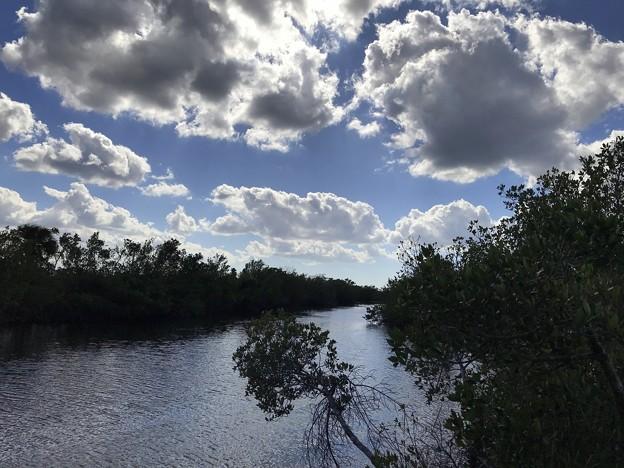 Swamp Visitor Center 1-7-18