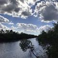 写真: Swamp Visitor Center 1-7-18