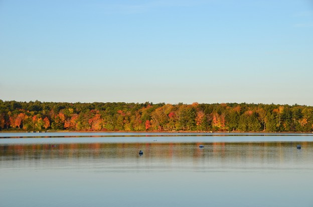 写真: Finally Autumn 10-21-17