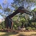 写真: Quetzalcoatlus 2-25-18