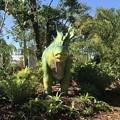 写真: Amargasaurus 2-25-18