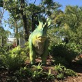Photos: Amargasaurus 2-25-18