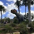 写真: T-Rex and a Child 2-25-18