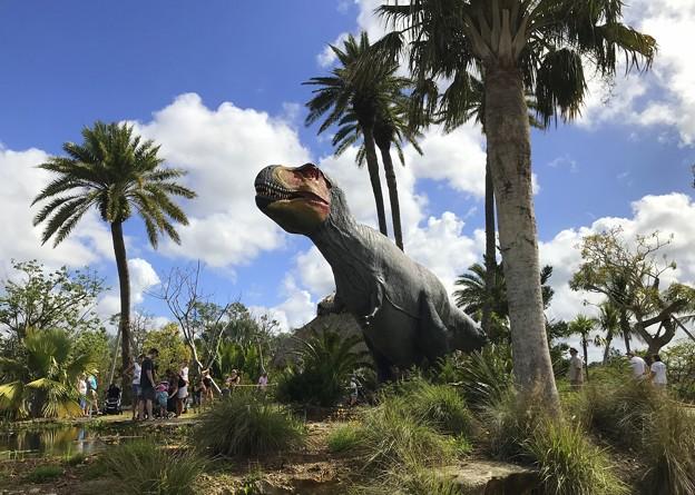 Tyrannosaurus Rex II 2-25-18