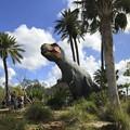 Photos: Tyrannosaurus Rex II 2-25-18