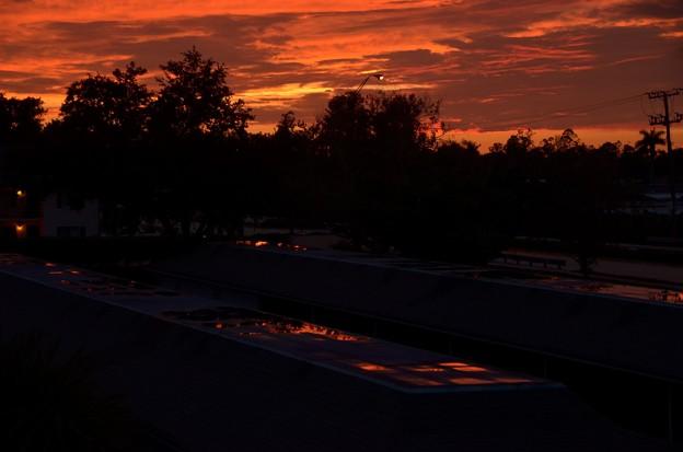 写真: The Red Puddles on the Roof 5-24-18