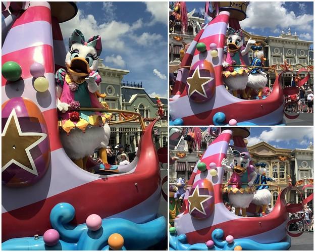 Daisy and Donald 8-20-18