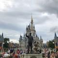 Photos: Walt 8-22-18