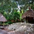 写真: Shell Mound 8-25-18
