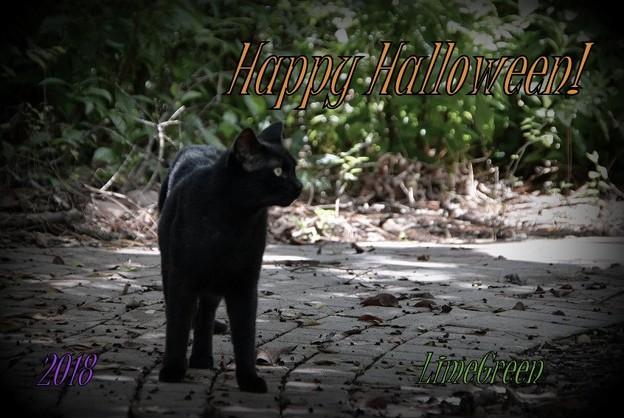Halloween Card 2018