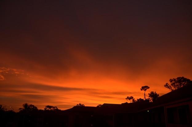 写真: Red Morning II 11-4-18