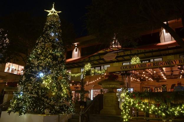 The Third Street Christmas Tree 2018