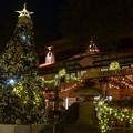 写真: The Third Street Christmas Tree 2018