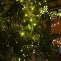 Xmas Tree 12-8-18
