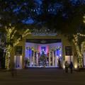Photos: Christmas Tree on 5th 12-13-18