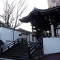 麻布山 2019-1-15