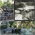 池に流れ込む川 2019-1-17