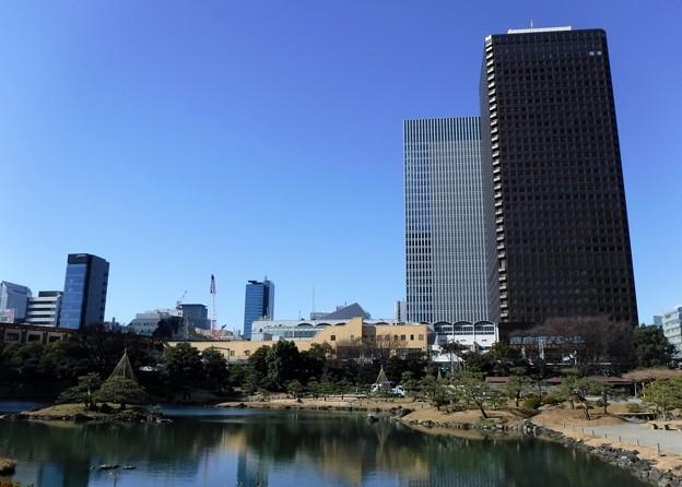 旧芝離宮恩賜庭園 2019-1-24